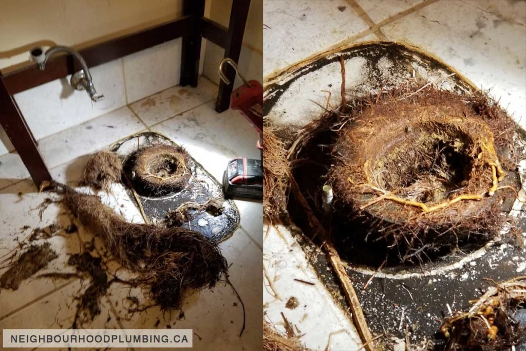 A bathroom floor with the toilet removed to show a solid mass of tree root in the toilet pipe.